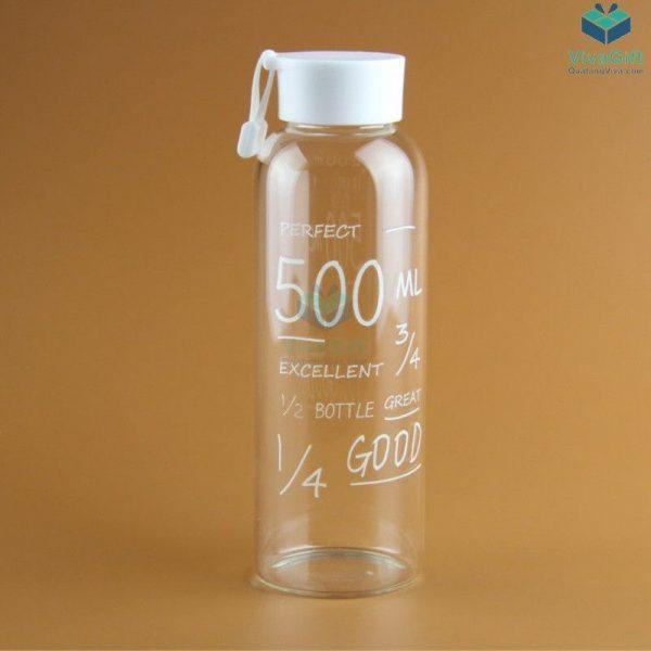 Bình nước nhựa 500ml có quai Q011 in logo công ty làm quà tặng